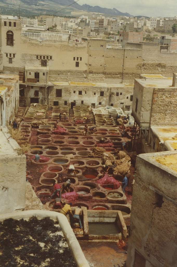 Tannery at Fez - photo by M. Reynolds