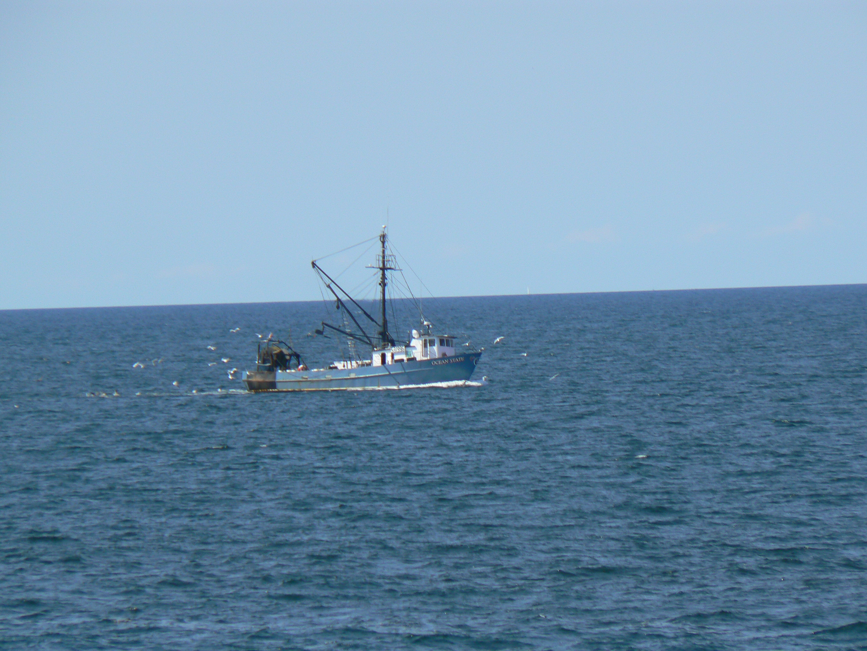Trawler. photo by M. Reynolds