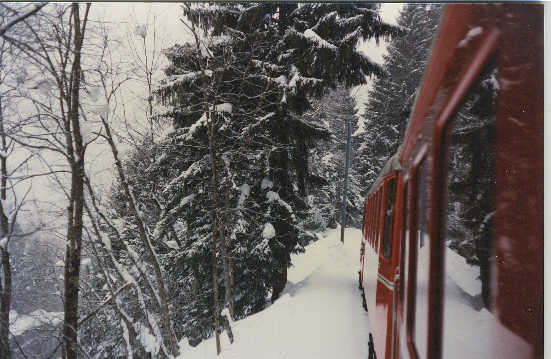 On the train to Engelberg, Switzerland. Photo by M. Reynolds